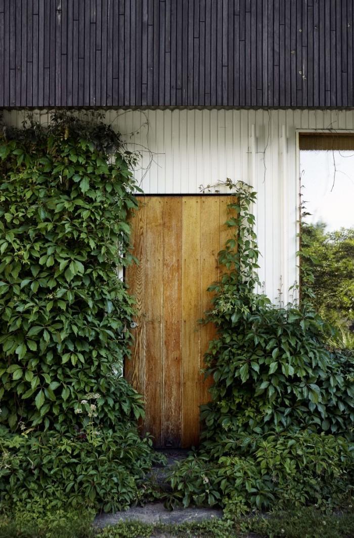 Dörren som leder från vardagsrummet ut till trädgården är helt övervuxen med radhusvin.