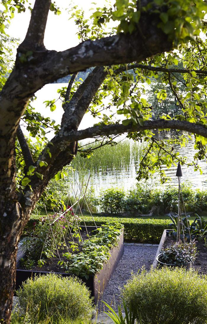 Utsikt över köksträdgårdens odlingslådor och en idegranshäck. Grusgångarna runt lådorna var ett måste. »Jag vill höra mina steg i gruset«, säger Victoria. Två städsegröna häckar av idegran (Taxus media 'Hillii') skapar en tydlig form även vintertid.