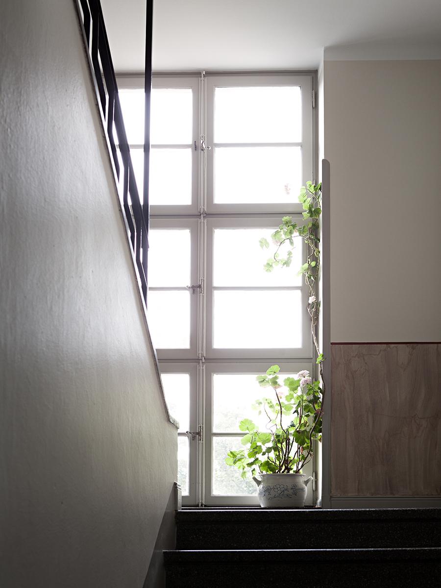 trappuppgång, blomkruka