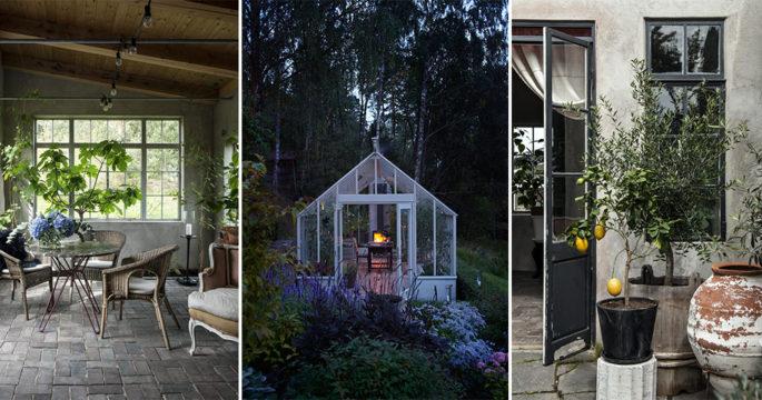 8 inspirerande idéer till växthuset och orangeriet